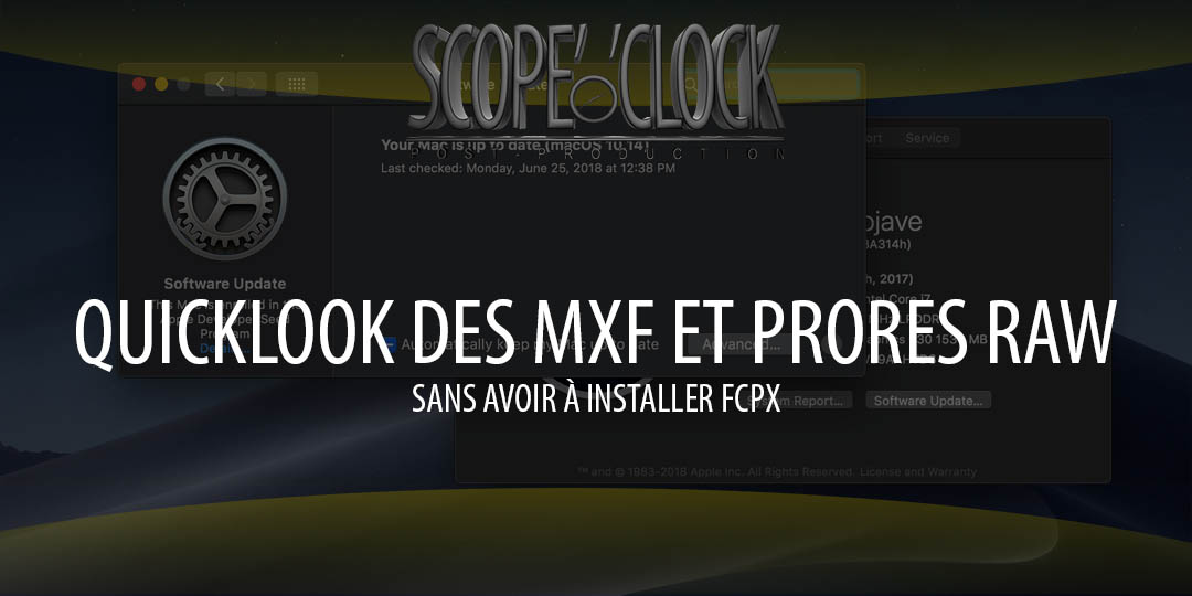 quicklook et provideo formats